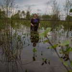 Melanie in swamps in the biosphere, May 2013. photo Sacha Dench